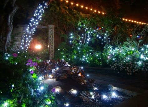 Garden Of Garden Of Lights At San Diego Botanic Garden
