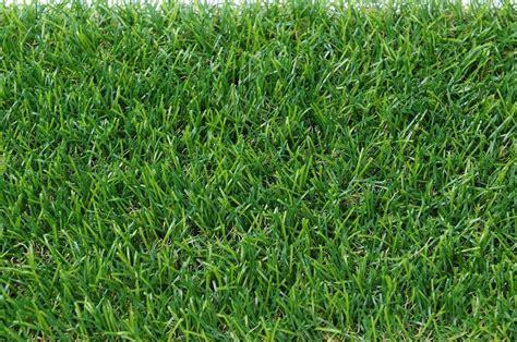 An Artificial 1 artificial carpet grass deqzt 1m x 5m