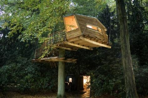 cool treehouse designs shelterness