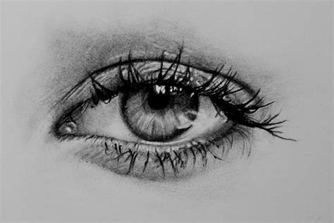 realistic eye realistic eye from eye realistic pencil and in color eye realistic
