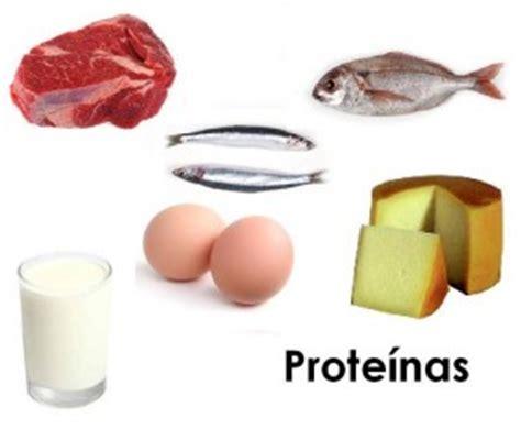 alimentos que aportan proteínas somos lo que comemos el loco que corre