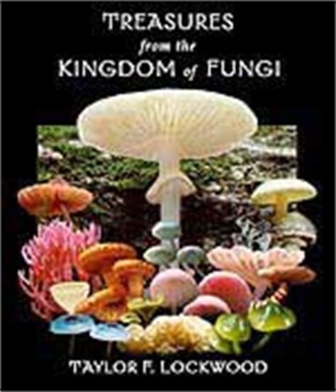 mushrooms demystified ebook tips for identifying and photographing mushrooms the
