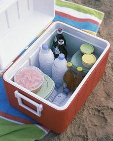 how to keep room cold in summer picnic at the on picnics picnic and picnic recipes