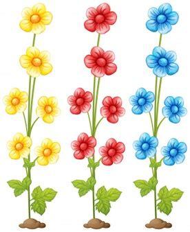 clipart gratis da scaricare fiori clip scaricare vettori gratis