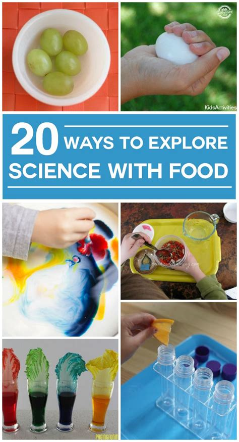 science food 25 best ideas about food science on science fair science fair