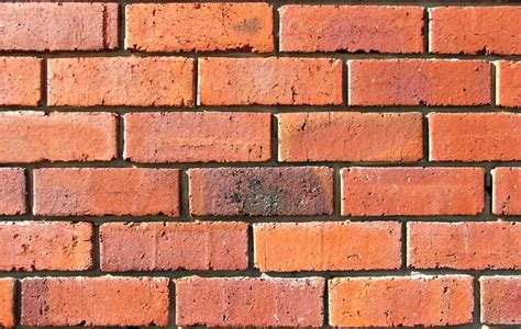 free stock photos rgbstock free stock images up against a brick wall tacluda august