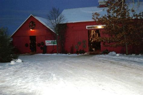 blackwoods christmas tree farm stillwater mn