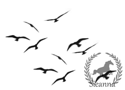black birds flying set 6 by sieannaboo on deviantart