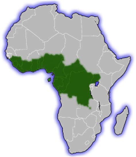 africa map rainforest forest elephants
