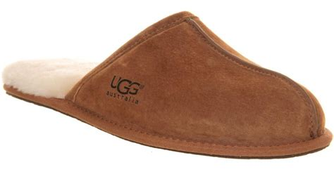 ugg house slippers mens mens ugg australia scuff house slippers