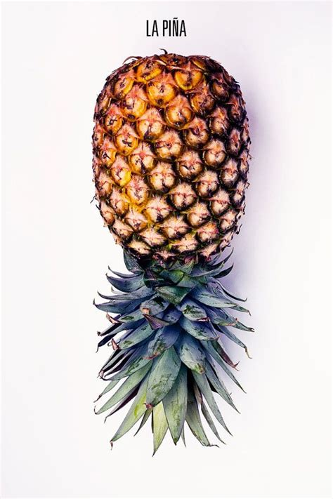 pineapple wallpaper pinterest 1000 images about iphone wallpapers on pinterest iphone