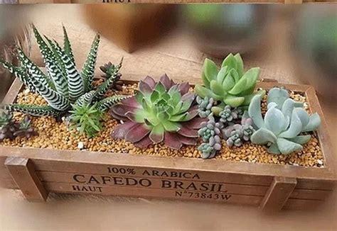 vaso per piante grasse vaso da fiori in legno rettangolare per piante grasse o di