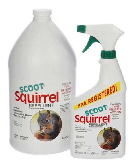scoot 174 squirrel repellent outdoors pinterest
