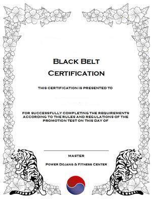 martial arts certificate templates free deluxe martial arts certificate templates on cd rom for sale