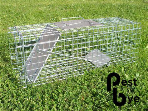 come costruire una gabbia per scoiattoli gabbia cattura tamia 21 99