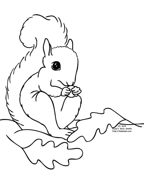 free coloring pages of squirrel with acorn