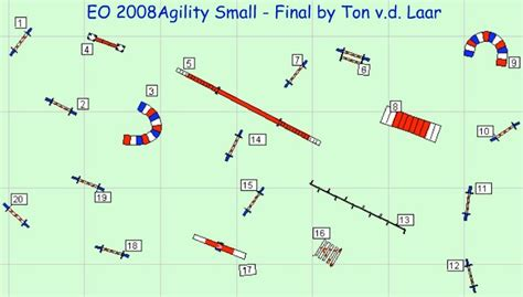 agility course because speed counts as much as accuracy especially at higher levels of competition