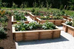 Raised Vegetable Garden Layout Why You Should Raised Veggie Beds Sustainable Living