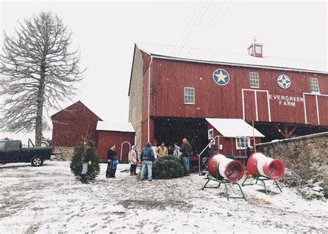 lehigh valley christmas tree farm evergreen farm tree farm in the lehigh valley