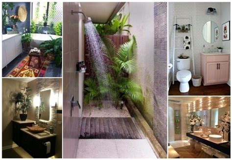 decorar  plantas naturales  ideas ecologicas