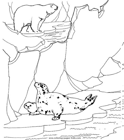 educational coloring pages zoo animals polar and seals color page