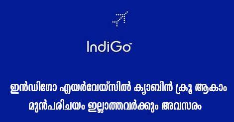 indigo airlines careers cabin crew indigo cabin crew recruitment 2018 walk in