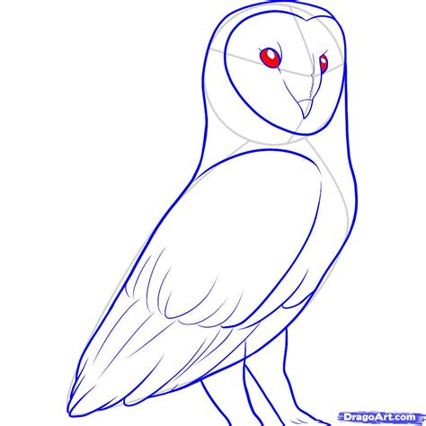 how to draw doodle owl how to draw a barn owl step 10 arts in medicine