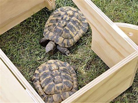 gabbia per tartarughe di terra novit 224 blitzen casetta rifugio professionale per