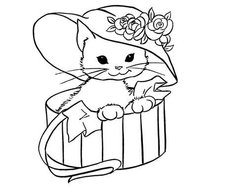 draw doodle coloring colour drawing free wallpaper cat coloring drawing