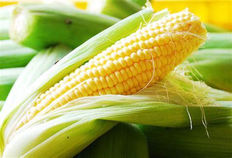 kumpulan berbagai gambar jagung