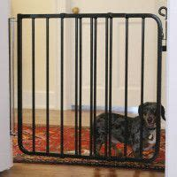 puppy gates petsmart 1000 ideas about indoor gates on gates pet gates for stairs and