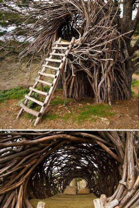 bird nest tree house in my wildest dreams pinterest