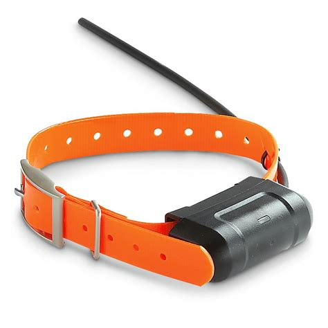 gps tracking collar garmin dc 40 gps tracking collar 310903 electronic collars at sportsman s guide