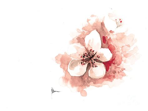 cherry blossom watercolor art print painting sakura