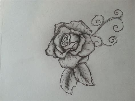 rose tattoo drawing tumblr hoontoidly roses drawing images