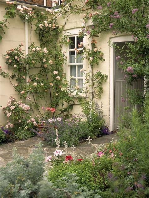 Hgtv Gardens by Rx Dk Lg02501 Climbing Rose S3x4 Lg Jpg