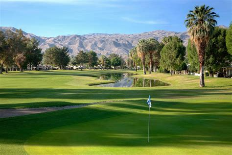 palm canyon swing things to do in palm springs california this summer