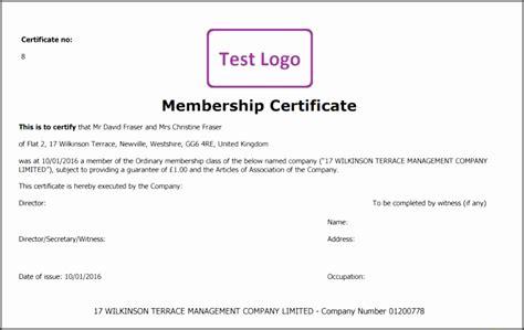 dividend certificate template 5 dividend vouchers template sletemplatess
