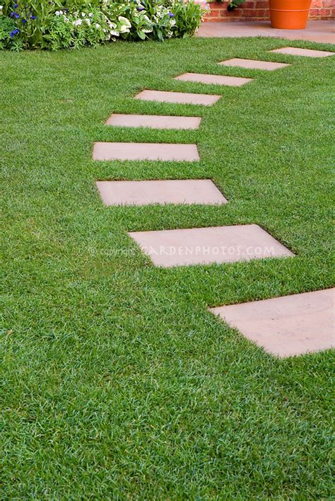 stepping stone path  perfect lawn grass plant flower