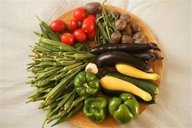 alimentazione ad un anno ad alassio un seminario sull alimentazione savonanews it