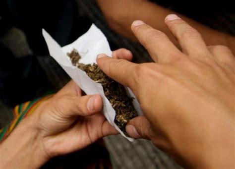 imagenes de minions fumando mota asamblea de la oea discute tema de las drogas cubadebate