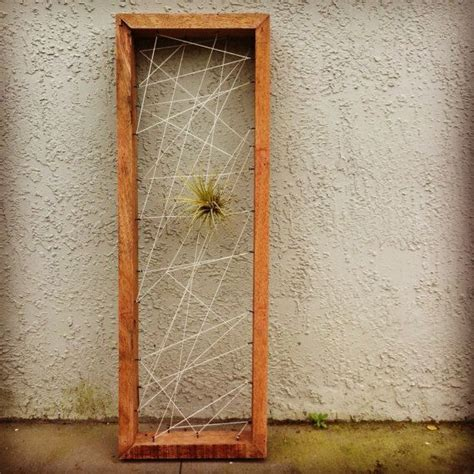 air plant wall holder rustic reclaimed recycled salvaged wood air plant holders