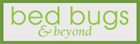 bed bugs and beyond bed bugs beyond has 45 reviews and average rating of 8 4