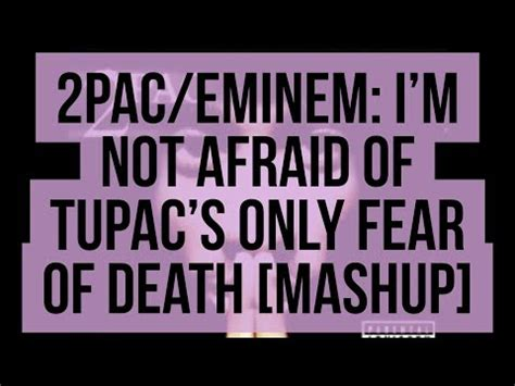 eminem not afraid mp3 eminem im not afraid mp3 image search results