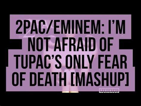eminem i m not afraid mp3 eminem im not afraid mp3 image search results