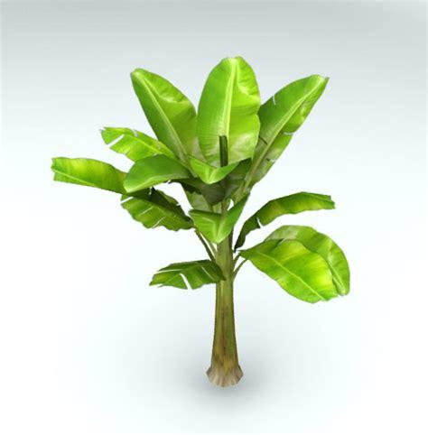 mini banana tree banana tree 3ds