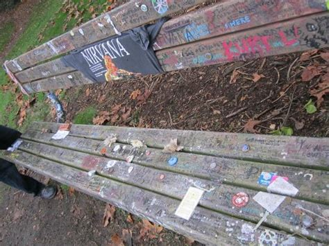 kurt cobain bench kurt cobain memorial bench lake washington seattle