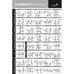Marcy Weight Bench Instructions Dumbbell Workout Exercise Poster Strength Training Chart