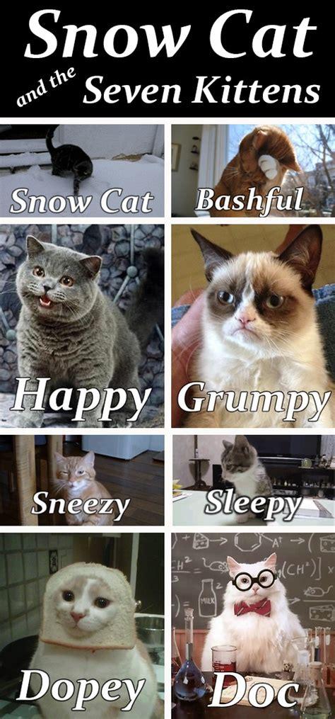 Grumpy Cat Snow Meme - snow cat and the seven kittens