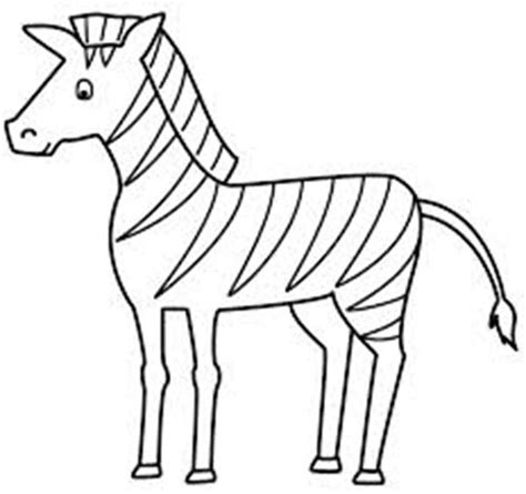 free coloring pages of baby zebra